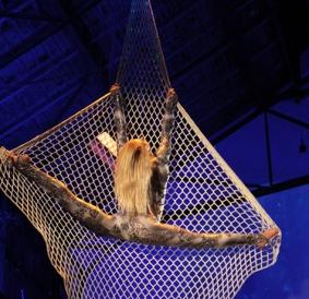 Natalia Macauley aerial net