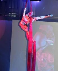 Cirque tissue