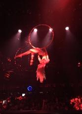 Zirkus ring