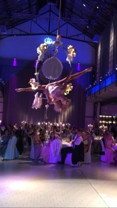 flying mirror palazzo