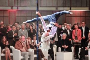 Pole-Show